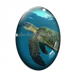 Cabochon Verre Ovale - tortue