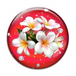 Cabochon Verre - orchidée