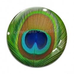 Cabochon Verre - plume de paon