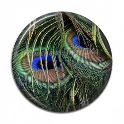 Cabochon Résine - plume de paon