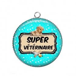 Pendentif Cabochon Argent - super vétérinaire