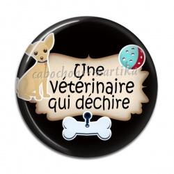Cabochon Résine - une vétérinaire qui déchire