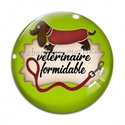 Cabochon Verre - VÉTÉRINAIRE FORMIDABLE