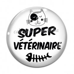 Cabochon Verre - Vétérinaire