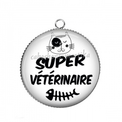Pendentif Cabochon Argent - Vétérinaire